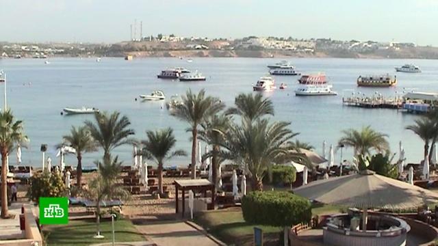 АТОР: авиасообщение с курортами Египта может возобновиться весной.Египет, авиация, туризм и путешествия.НТВ.Ru: новости, видео, программы телеканала НТВ