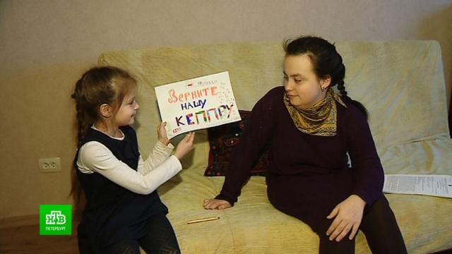 Из петербургских аптек исчезло самое популярное лекарство от эпилепсии.Санкт-Петербург, аптеки, болезни, здоровье, медицина.НТВ.Ru: новости, видео, программы телеканала НТВ