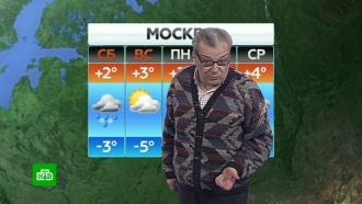 Прогноз погоды на 25 января