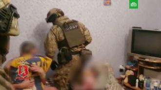 Студию детского порно взяли штурмом в Красноярске