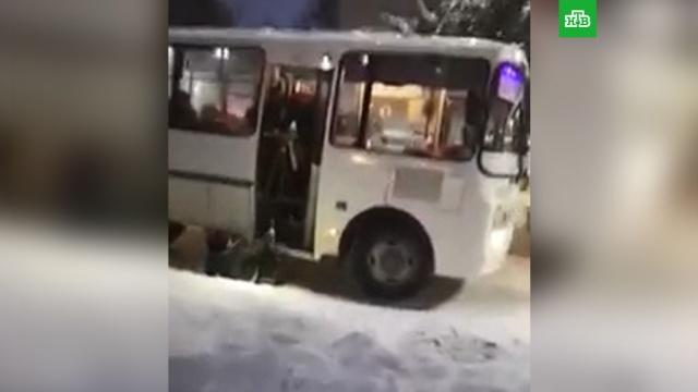 Под Новосибирском водитель вышвырнул пассажирку из автобуса.Новосибирская область, общественный транспорт, скандалы.НТВ.Ru: новости, видео, программы телеканала НТВ