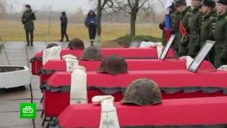 ВПетербурге сняли документальный фильм опоисковиках сПулковских высот