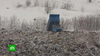 Мишустин назначил нового куратора мусорной реформы