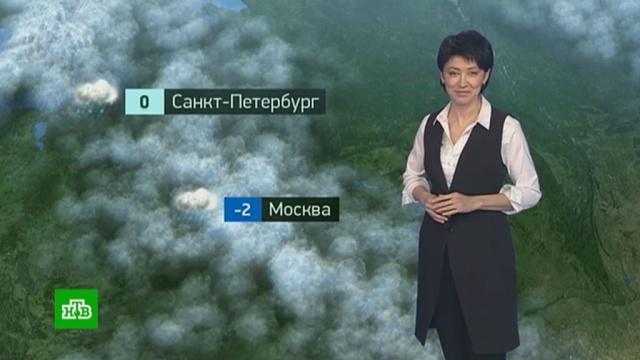 Утренний прогноз погоды на 28января.погода, прогноз погоды.НТВ.Ru: новости, видео, программы телеканала НТВ