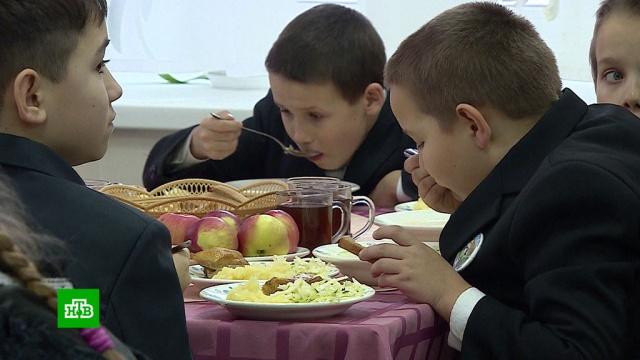 Мордовские дети научились выращивать овощи для школьной столовой.еда, Мордовия, образование, продукты, школы.НТВ.Ru: новости, видео, программы телеканала НТВ