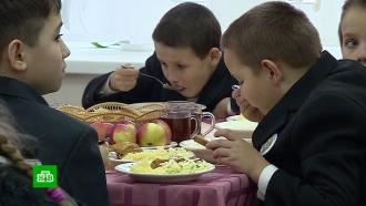 Мордовские дети научились выращивать овощи для школьной столовой