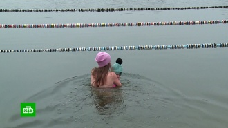 Калининградские моржи купаются вледяной воде вместе сполугодовалым сыном