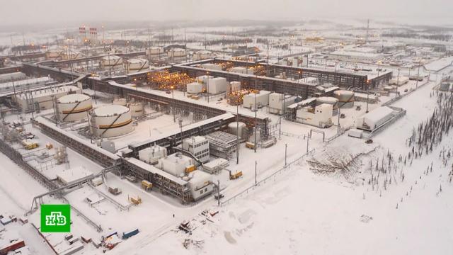 Сечин сообщил об успехах «Роснефти» иперспективах проекта «Восток ойл».Путин, Роснефть, компании, экономика и бизнес.НТВ.Ru: новости, видео, программы телеканала НТВ