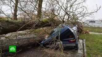 Убивший нескольких европейцев ураган «Сабина» приближается кРоссии