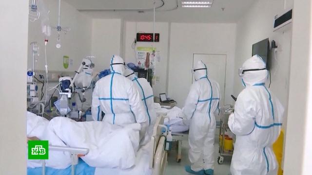 Российская тест-система для обнаружения коронавируса прошла регистрацию.болезни, Китай, наука и открытия, эпидемия.НТВ.Ru: новости, видео, программы телеканала НТВ