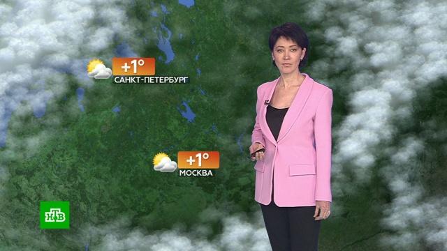 Прогноз погоды на 15 февраля.погода, прогноз погоды.НТВ.Ru: новости, видео, программы телеканала НТВ