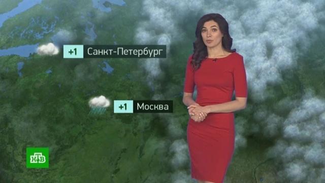 Утренний прогноз погоды на 14февраля.погода, прогноз погоды.НТВ.Ru: новости, видео, программы телеканала НТВ