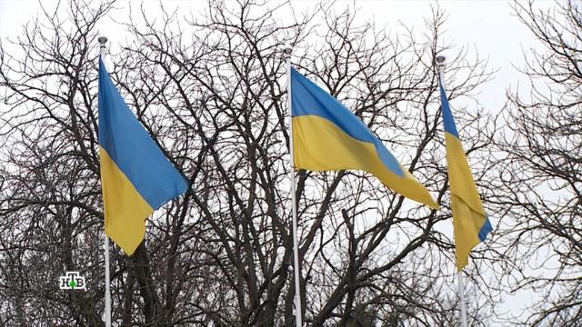 Киев отверг предложенный вМюнхене мирный план по Донбассу.Германия, Украина, войны и вооруженные конфликты.НТВ.Ru: новости, видео, программы телеканала НТВ