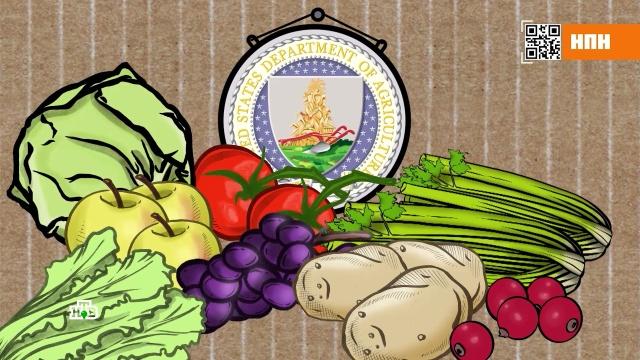 Почему плохо промытые овощи ведут кинвалидности исмерти.болезни, еда, здоровье, продукты.НТВ.Ru: новости, видео, программы телеканала НТВ