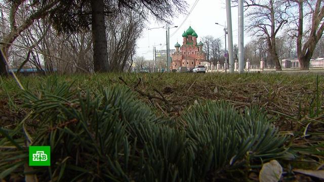 ВМоскве побит температурный рекорд 1925года.зима, погода, погодные аномалии.НТВ.Ru: новости, видео, программы телеканала НТВ