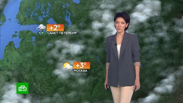 Прогноз погоды на 20 февраля.погода, прогноз погоды.НТВ.Ru: новости, видео, программы телеканала НТВ