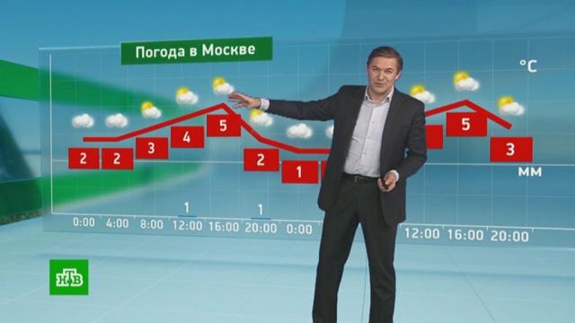 Утренний прогноз погоды на 19февраля.погода, прогноз погоды.НТВ.Ru: новости, видео, программы телеканала НТВ