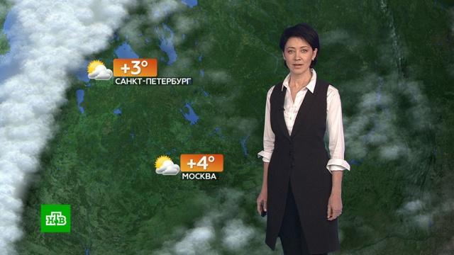 Прогноз погоды на 21 февраля.погода, прогноз погоды.НТВ.Ru: новости, видео, программы телеканала НТВ