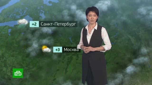 Утренний прогноз погоды на 20февраля.погода, прогноз погоды.НТВ.Ru: новости, видео, программы телеканала НТВ