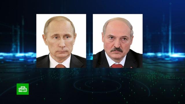 Путин и Лукашенко обсудили сотрудничество в энергетической сфере.Белоруссия, Лукашенко, Путин, дипломатия, переговоры.НТВ.Ru: новости, видео, программы телеканала НТВ