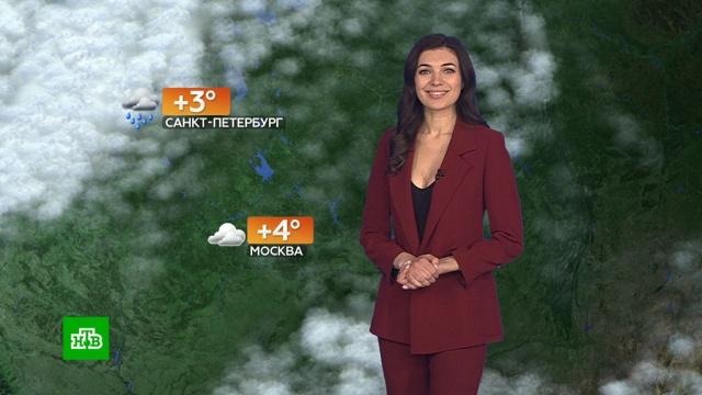 Прогноз погоды на 22 февраля.погода, прогноз погоды.НТВ.Ru: новости, видео, программы телеканала НТВ