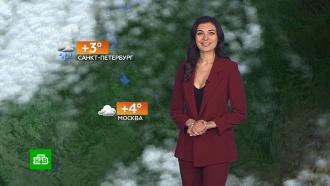 Прогноз погоды на 22 февраля.НТВ.Ru: новости, видео, программы телеканала НТВ