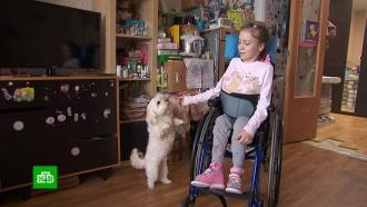 Страдающей генетическим заболеванием школьнице Насте нужны деньги на аппарат ИВЛ