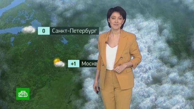Утренний прогноз погоды на 25февраля.погода, прогноз погоды.НТВ.Ru: новости, видео, программы телеканала НТВ