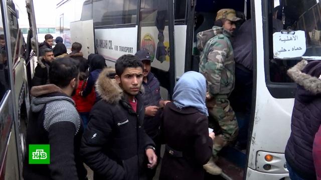 ВСирии возобновилось движение по стратегическому шоссе М5.Сирия, войны и вооруженные конфликты, дороги.НТВ.Ru: новости, видео, программы телеканала НТВ