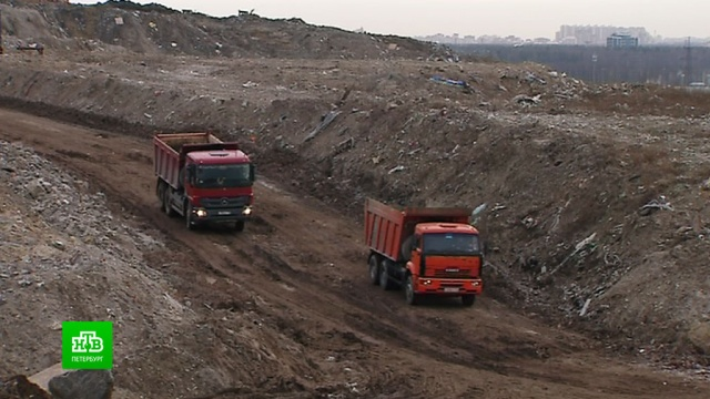 Бывший мусорный полигон на севере Петербурга засыпают земляным панцирем.Санкт-Петербург, мусор, экология.НТВ.Ru: новости, видео, программы телеканала НТВ