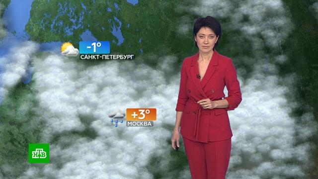 Прогноз погоды на 27 февраля.погода, прогноз погоды.НТВ.Ru: новости, видео, программы телеканала НТВ