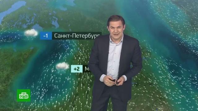 Утренний прогноз погоды на 26февраля.погода, прогноз погоды.НТВ.Ru: новости, видео, программы телеканала НТВ