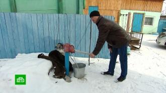 ВСибири люди получили квитанции на 500тысяч рублей за воду из колонки