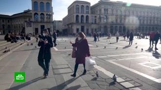 Российский турбизнес из-за коронавируса потерял десятки миллиардов рублей.НТВ.Ru: новости, видео, программы телеканала НТВ
