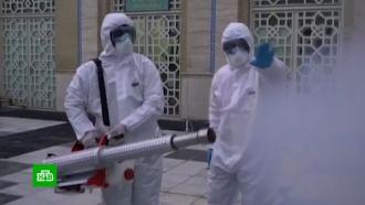 Китайский коронавирус поразил еще шесть стран.НТВ.Ru: новости, видео, программы телеканала НТВ