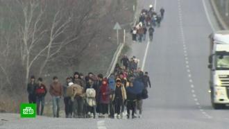 Эрдоган: Турция открыла границу сЕС для сирийских беженцев