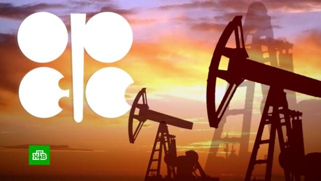 В штаб-квартире ОПЕК нашли способ остановить падение нефтяных цен.ОПЕК, экономика и бизнес, нефть, тарифы и цены, эпидемия.НТВ.Ru: новости, видео, программы телеканала НТВ