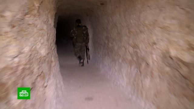 Впригороде Алеппо освободили превращенный вукрепленную огневую точку поселок.Сирия, армии мира, армия и флот РФ, войны и вооруженные конфликты, терроризм.НТВ.Ru: новости, видео, программы телеканала НТВ