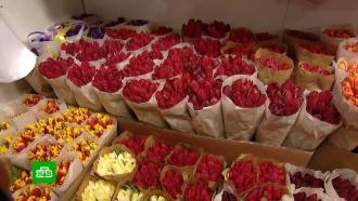 «Коронавирусные» фейки не отпугнули москвичей от цветочных рынков имагазинов