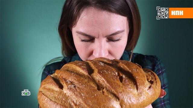 Как распознать поддельный ржаной хлеб.еда, здоровье, магазины, торговля.НТВ.Ru: новости, видео, программы телеканала НТВ
