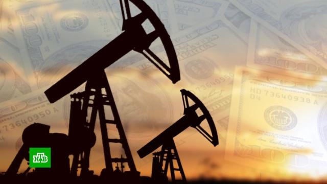 Акции крупнейших компаний России обвалились на Мосбирже.биржи, валюта, нефть, экономика и бизнес.НТВ.Ru: новости, видео, программы телеканала НТВ
