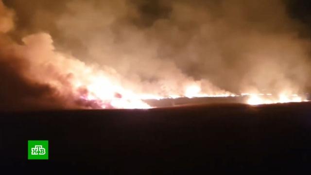 В Анапе пенсионерка устроила крупный пожар в зарослях камыша.Анапа, Краснодарский край, пожары.НТВ.Ru: новости, видео, программы телеканала НТВ