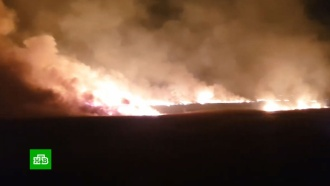 В Анапе пенсионерка устроила крупный пожар в зарослях камыша