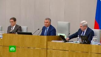 Володин поручил аннулировать пропуск депутата, нарушившего «коронавирусный» карантин