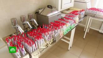 Куда отвозят анализы россиян на коронавирус