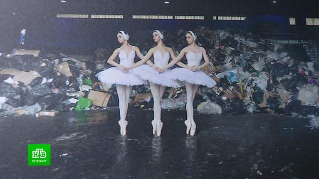 Проблемы экологии вдохновили на балетную фотосессию среди мусора.Санкт-Петербург, балет, выставки и музеи, мусор, фото, экология.НТВ.Ru: новости, видео, программы телеканала НТВ