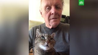 Играющий на пианино Энтони Хопкинс и его кот растрогали пользователей Сети