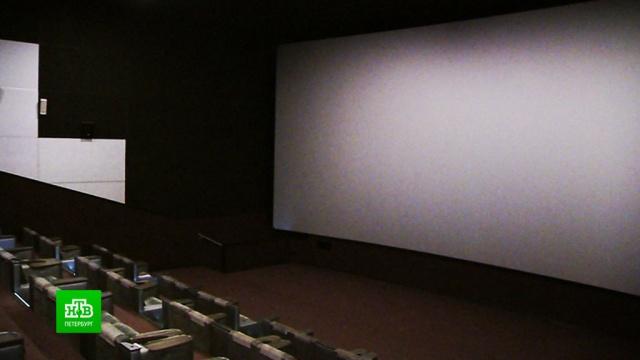 «Коронавирусный» антракт: частные театры, галереи икинотеатры готовятся выживать без зрителей.Санкт-Петербург, болезни, выставки и музеи, кино, театр, эпидемия.НТВ.Ru: новости, видео, программы телеканала НТВ