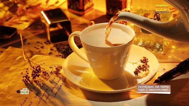 Полезноли пить чай смолоком?НТВ.Ru: новости, видео, программы телеканала НТВ