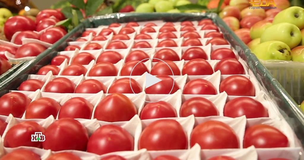 Помидоры не всезон: какие томаты лучше— дорогие или подешевле?